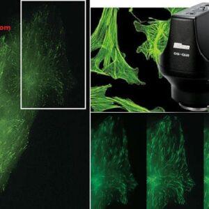 camera hỗ trợ chụp quỳnh quang Nikon DS-Qi2